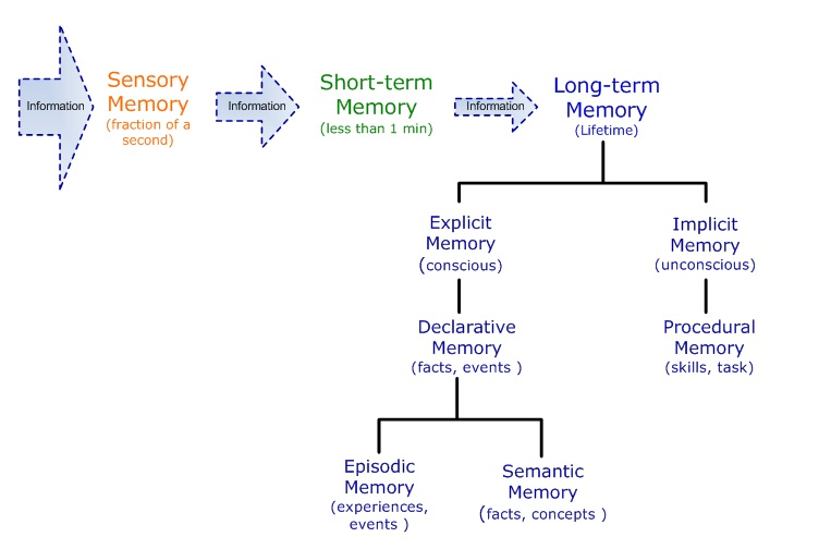 a study of memory strategies for Study smart make the most of your study time with these the new study session jogs their memory and they recall the strategies work because they are.