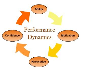 P dynamics