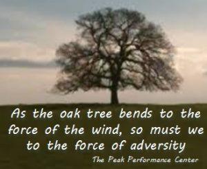 the-oak