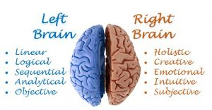 left-brain-and-right-brain