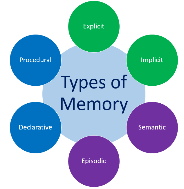 Types of Short-Term Memory