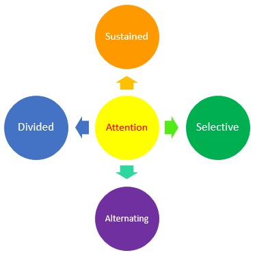 Types of Attention