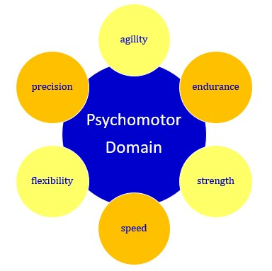 dave psychomotor domain I have received some interesting feedback and critique of my circular representation of ravindra h dave's psychomotor domain of educational objectives i have been asked why i have chosen to use the circular design, to alternative verbs and to expand the definition of psychomotor activity.