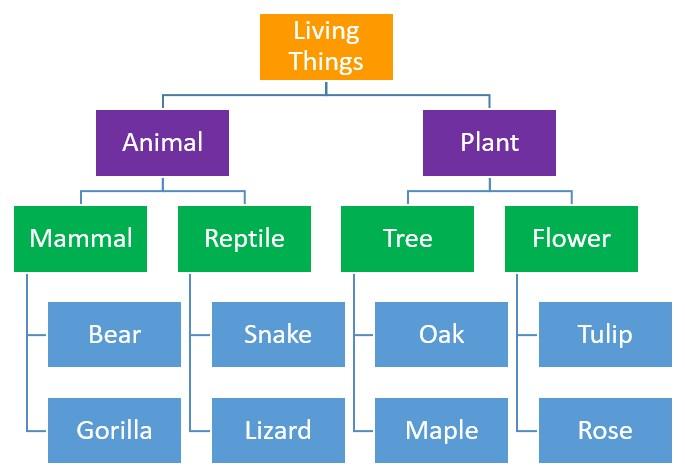 Hierarchies
