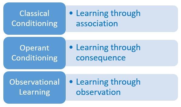 Behavioral Learning - The Peak Performance Center