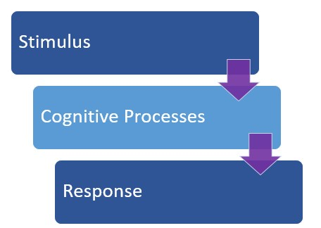 Cognition And Behavior Attention >> Cognitive Learning Theory The Peak Performance Center