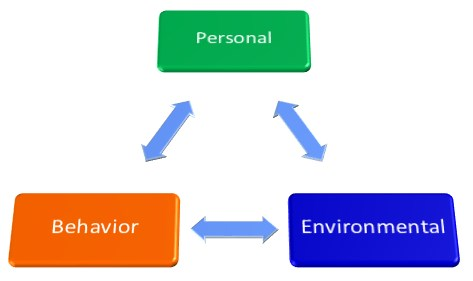 Behavior And Cognitive Theories Have Both Many