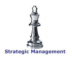 strategic mngt